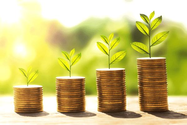 pile de pièces de monnaie et plantes